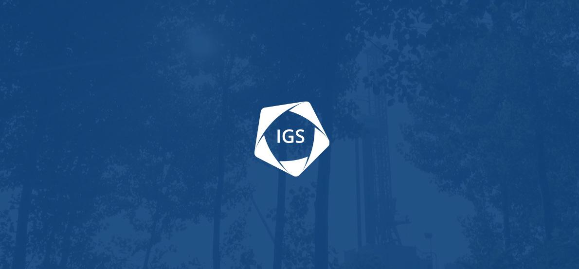 pittogramma logo IGS